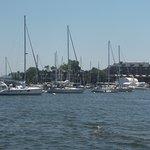 "Annaopolis Harbor from ""Harbor Queen"""