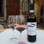 Vino. Paraiso para los amantes del vino
