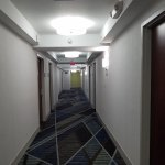 Holiday Inn Express Albany - Downtown Foto