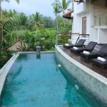 Your own private pool with uninterrupted rice field and jungle views