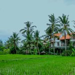 Peaceful setting with uninterrupted views, yet only 5 minutes from Ubud Centre!