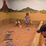 """The """"fossil dig""""."""