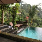 Bidadari Private Villas & Retreat Picture