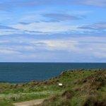 Waipapa Point - 30 Minute Drive from Lazy Dolphin