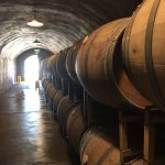The cave at Benziger Winery
