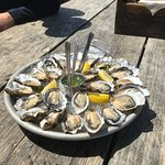 great oysters - small but tasty