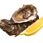 Mussel Inn Fresh Mussels