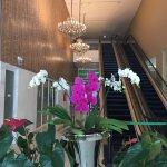 Foto de Holiday Inn Natal