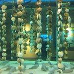 Photo of Aomori Asamushi Aquarium