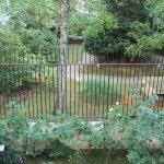 Hôtel Le Vert Galant - vue du jardin
