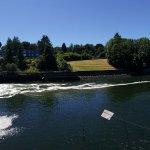 Salmon ladder/Ballard Locks