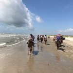 Photo de Horses On The Beach: Corpus Christi
