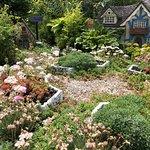 Mini-Gardens :D