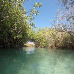 Floating a lazy river (JUST US) in Sian Ka'an (Sian Ka'an - Muyil Tour)