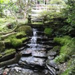 The stream gently flows through the garden