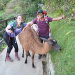 Gary, my wife Stefanie, and our Llama brother at MP
