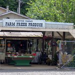 Hunter Farms