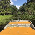 In swampy waters..