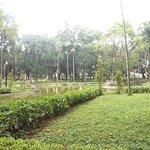 Photo of Luz Square