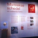 Photo of Museum Volkenkunde