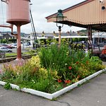 Gardens are well tended on every station
