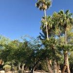 Canyon Plaza Resort Foto
