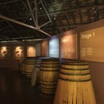 The Macallan Distillery Foto