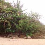Sandy Beach Rincon