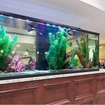 Large fish tank in lobby area