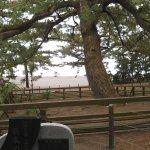 Photo of Miho Seacoast (Miho no Matsubara Beach)