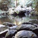 Barron River waterpool