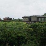 QingTianGang @ Yangmingshan
