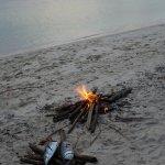 Wakatobi Hoga Diving Foto