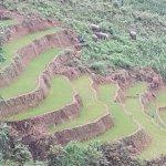 Photo of Trekking Sapa