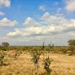 Photo of Baobab Ridge