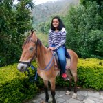 horse riding option