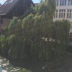 Palmscher Bau Foto
