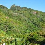 Vue sur le Parc National du Morne Seychellois depuis la terrasse