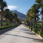 Photo of Villa delle Palme Delfina