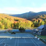 Room view of tennis courts in the fall!