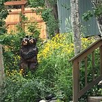Photo de Bear Creek Winery and Lodging