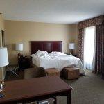 Hampton Inn & Suites Toledo-Perrysburg Foto