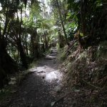 switchback trail out