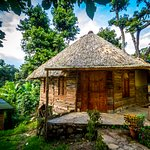 """outside view of Bungalow Colibri"""