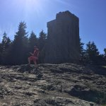 Watch Tower at Mt. Constitution!