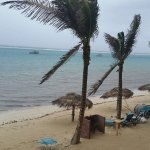 Photo de Morritts Tortuga Club and Resort