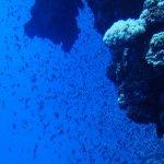 Blue Hole Foto