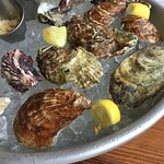 Lovely platter of mixed oysters