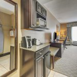 Holiday Inn Express & Suites Tampa USF-Busch Gardens Photo