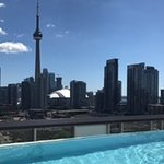 Rooftop pool with view of CN Tower, Rogers Centre, and Lake Ontario